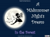 A Midsummer Night's Dream (slide 36/124)