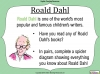 Boy (Roald Dahl) (slide 11/98)