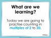 Counting in 2s to 20 (slide 2/17)
