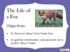 Fantastic Mr Fox by Roald Dahl (slide 59/103)
