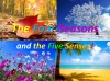 Four Seasons and Five Senses