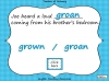 Homophones - Year 3 and 4 (slide 12/19)