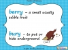 Homophones - Year 3 and 4 (slide 9/19)