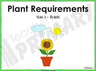 Plant Requirements - Year 3