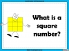 Square Numbers - Year 5 (slide 2/24)