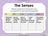 Using the Senses (Year 1 Poetry Unit) (slide 13/58)