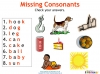 Vowels and Consonants (slide 19/22)
