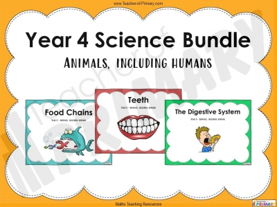Year 4 Science Bundle - Animals, including humans